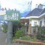 【菓子の樹】北海道洋菓子界レジェンドによる地域に愛される老舗洋菓子店!