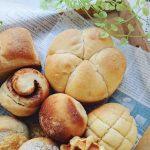 【マルヤマベーカリー Shian(シアン)】翌日おいしいあこ天然酵母パン!